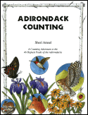 Adirondack Counting: A Counting Adventure to the 46 Highest Peaks of the Adirondacks (1998)