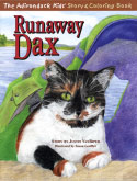The Adirondack Kids� Story & Coloring Book: Runaway Dax (2005)